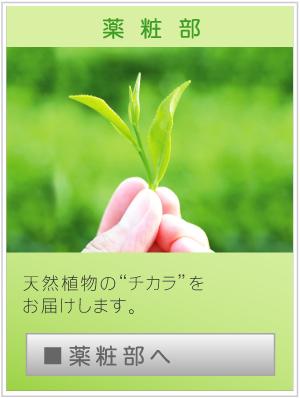 btn_yakusyo